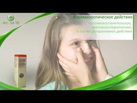 Эуфорбиум композитум Назентропфен С спрей гомеопатический 20мл